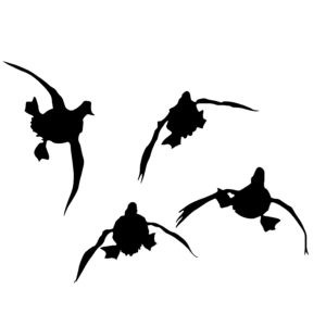 24 Duck Hunting Trailer Decal Duck Hunting Wall Decal Sticker